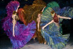 Шоу балет (6 танцовщиц)